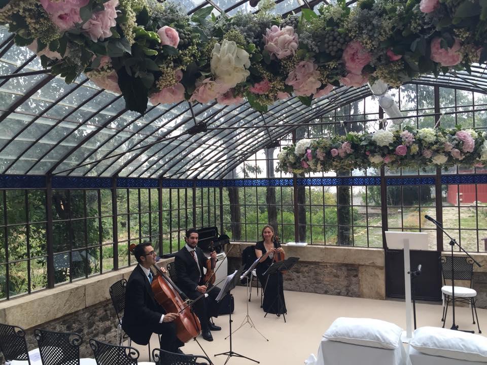 musica en el invernadero